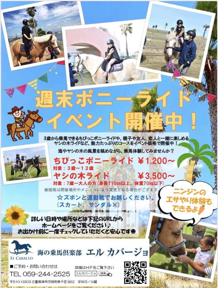 海を見ながら乗馬体験 週末ポニーライドイベント